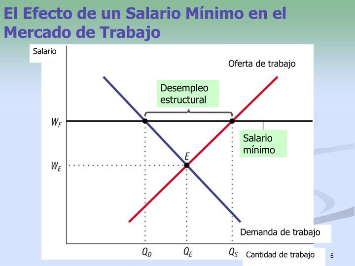 El Efecto de un Salario Mínimo en el Mercado de Trabajo