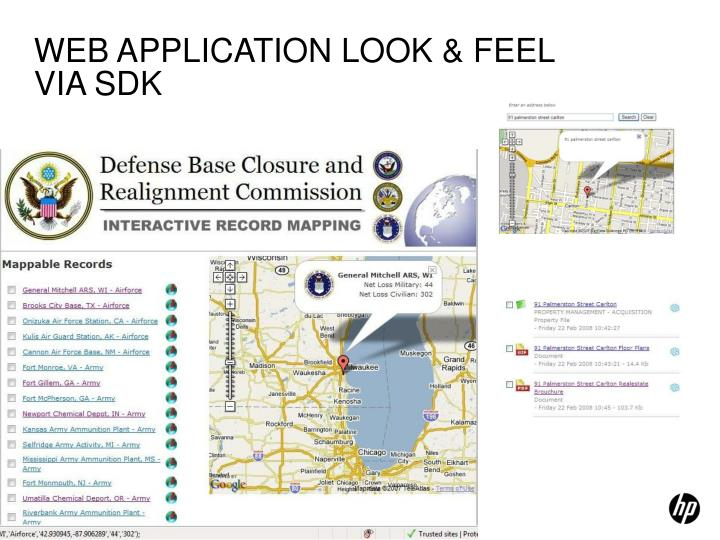 WEB APPLICATION LOOK & FEEL