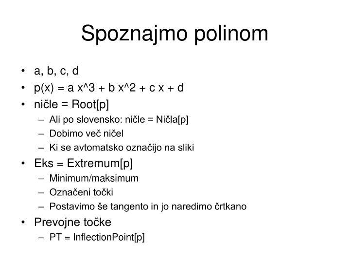 Spoznajmo polinom