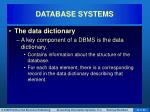 database systems11