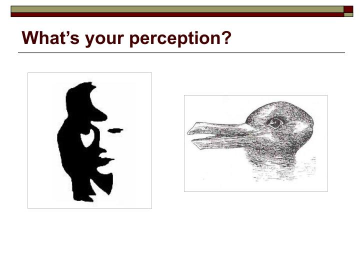 What's your perception?
