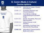b comm media culture course options