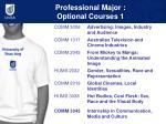 professional major optional courses 1