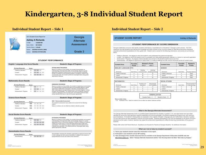 Kindergarten, 3-8 Individual Student Report