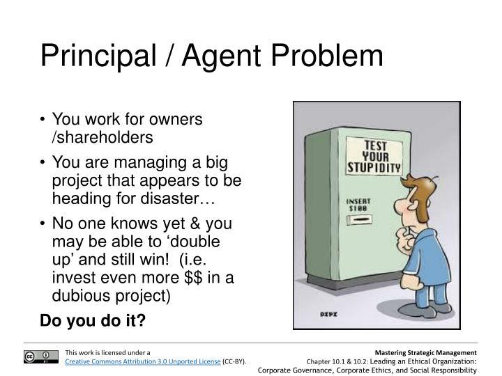 Principal / Agent Problem