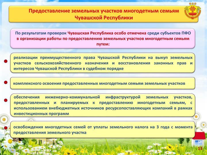 Получение гражданства Российской Федерации, Вид на