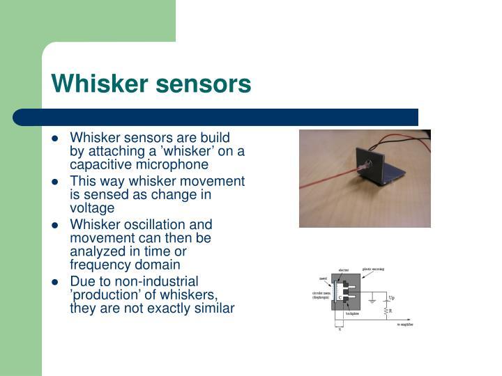 Whisker sensors