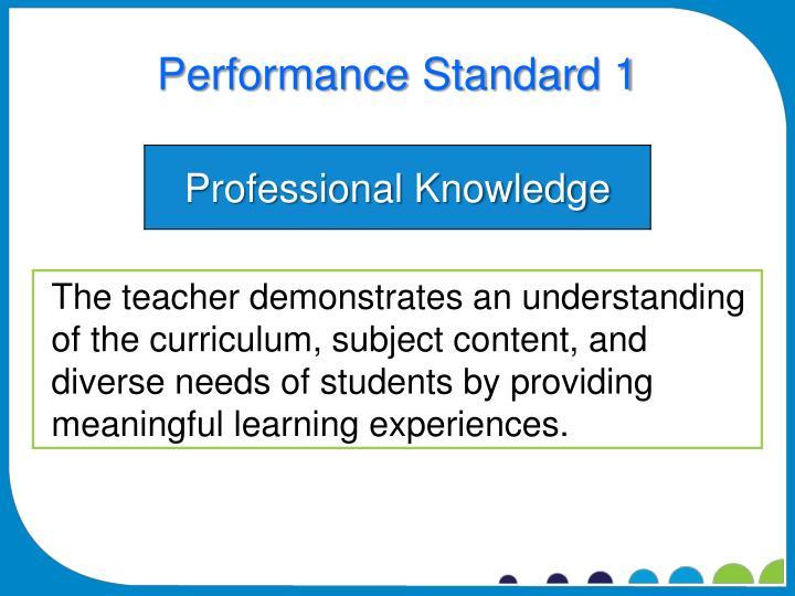 Performance Standard 1