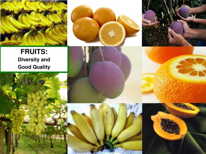 FRUITS: