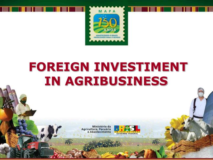 FOREIGN INVESTIMENT