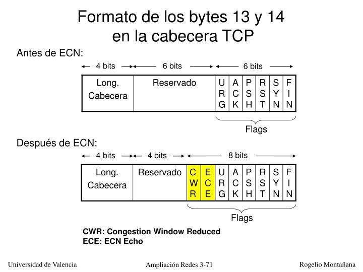 Formato de los bytes 13 y 14