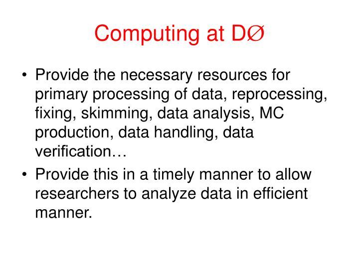 Computing at D