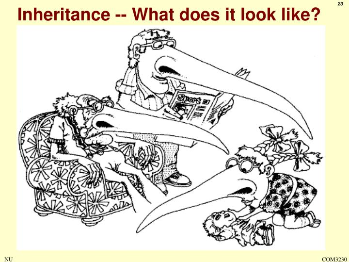 Inheritance -- What does it look like?