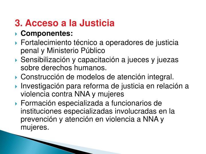 3. Acceso a la Justicia