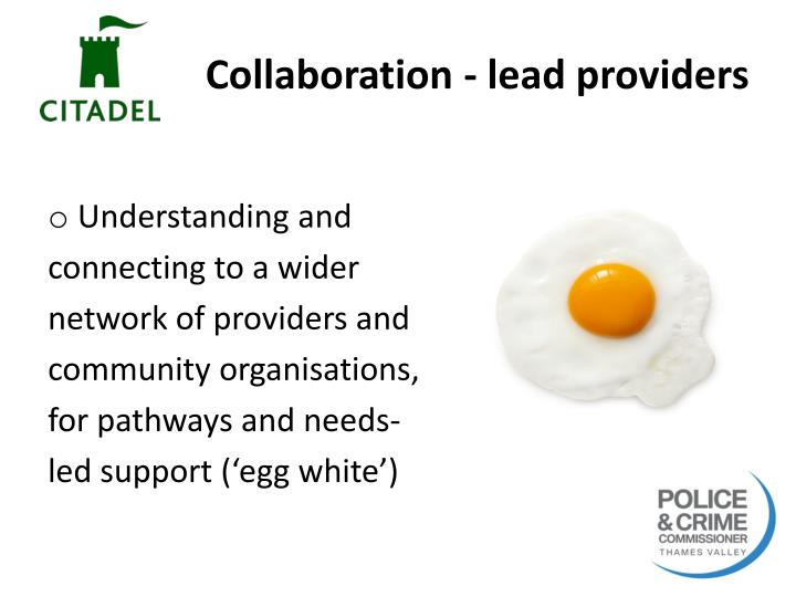 Collaboration - lead providers