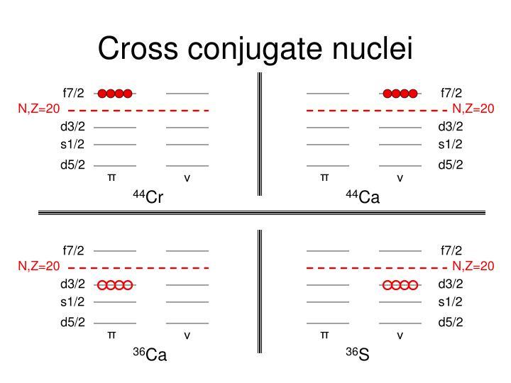 Cross conjugate nuclei