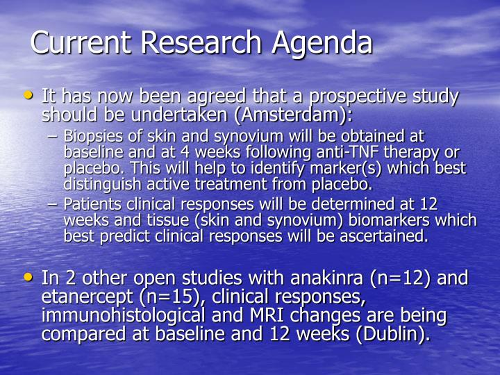 Current Research Agenda