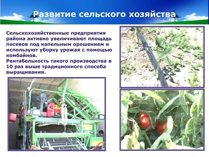 Развитие сельского хозяйства