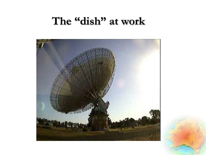 "The ""dish"" at work"