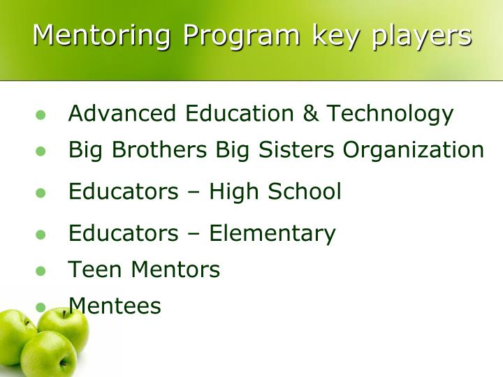Mentoring Program key players