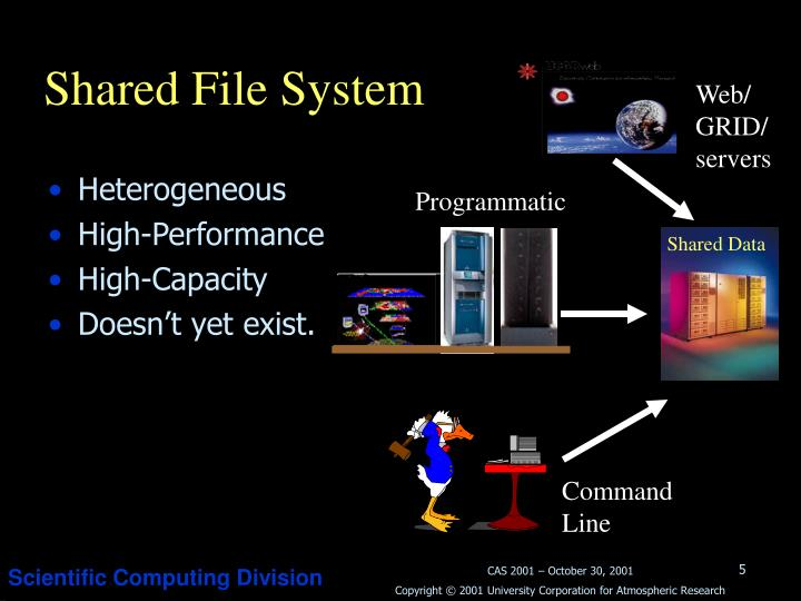 Shared File System