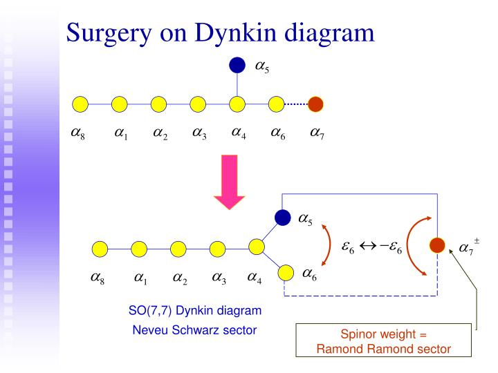 Surgery on Dynkin diagram