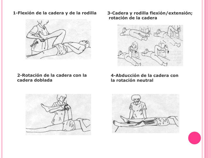 1-Flexión de la cadera y de la rodilla