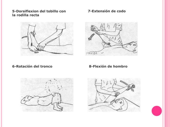 5-Dorsiflexion del tobillo con