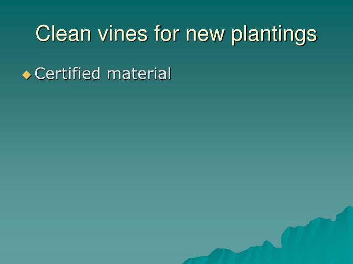 Clean vines for new plantings