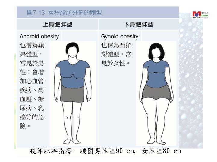 腹部肥胖指標