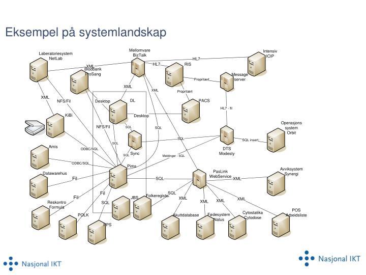 Eksempel på systemlandskap