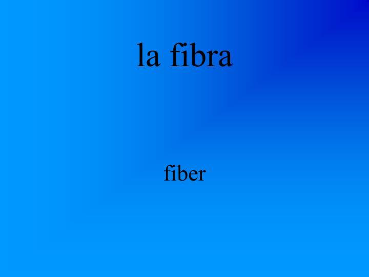 la fibra