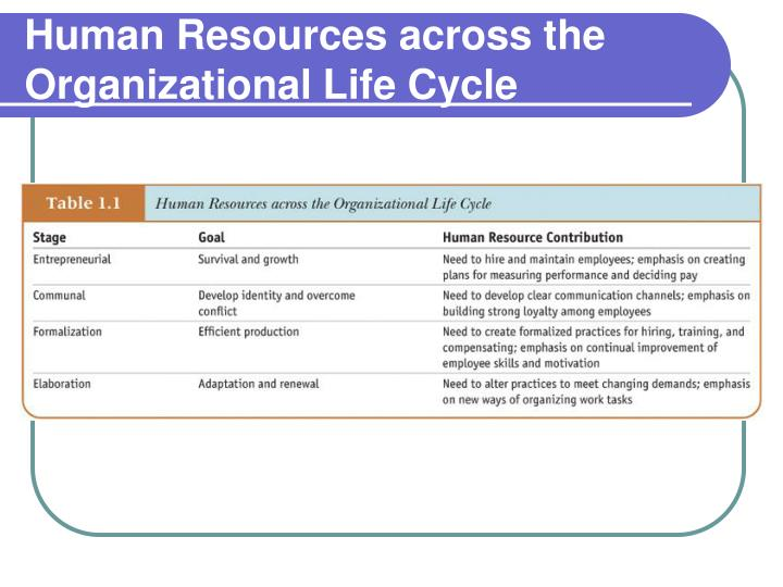 Human Resources across the Organizational Life Cycle