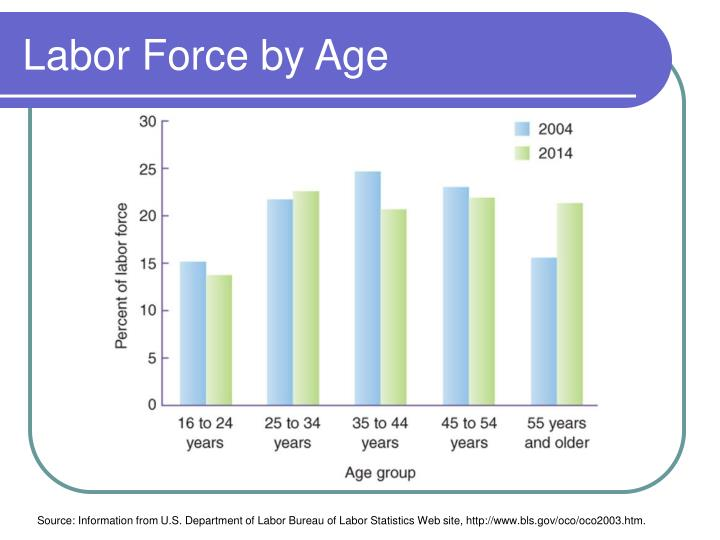 Labor Force by Age