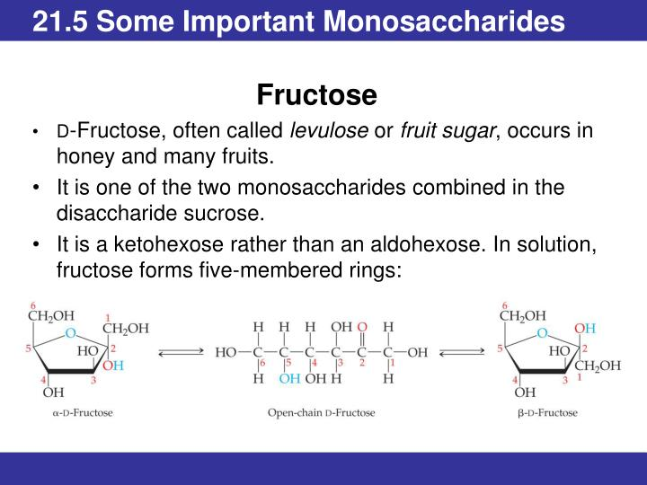 21.5 Some Important Monosaccharides