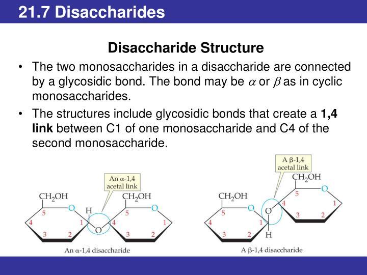 21.7 Disaccharides