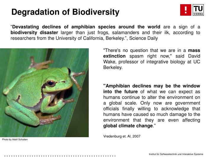 Degradation of Biodiversity