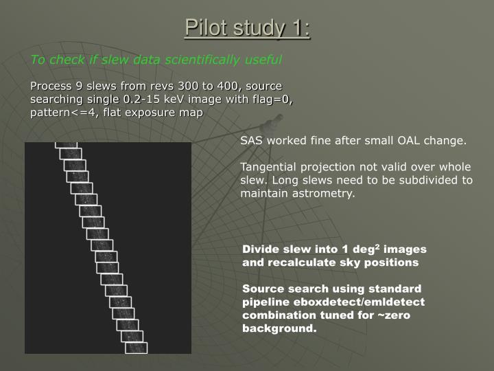 Pilot study 1: