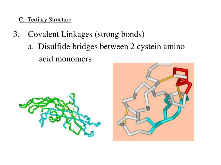 C.  Tertiary Structure