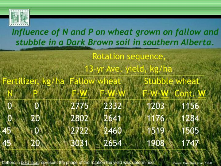 Influence of N and P on wheat grown on fallow and stubble in a Dark Brown soil in southern Alberta.