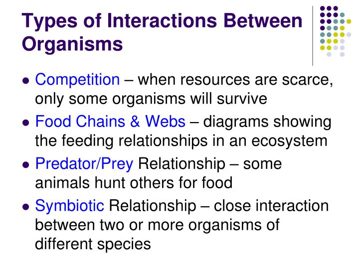 Types of Interactions Between Organisms