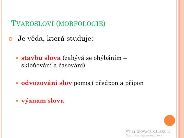 Tvarosloví (morfologie)