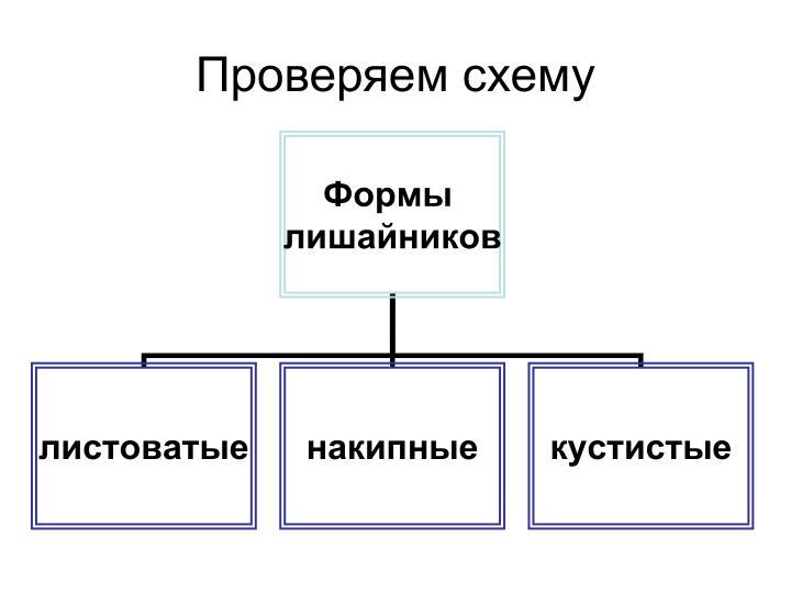 Проверяем схему