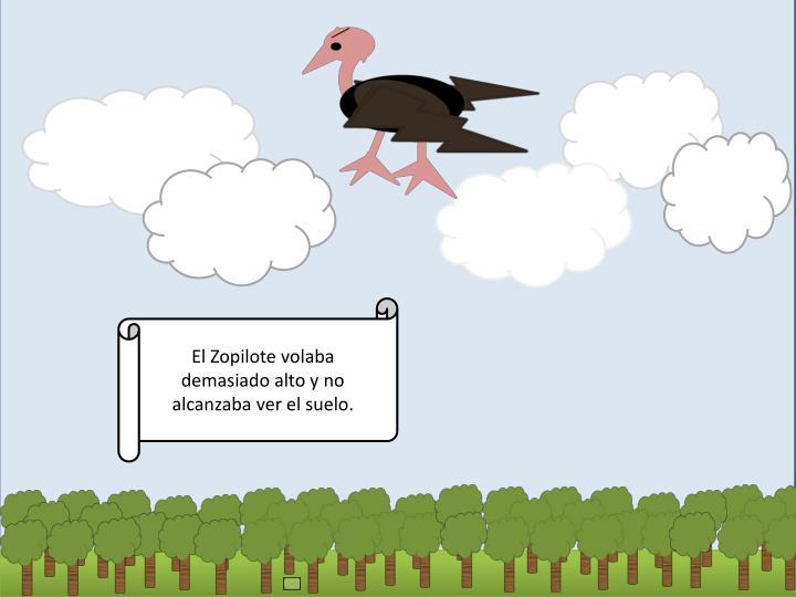 El Zopilote volaba demasiado alto y no alcanzaba ver el suelo.