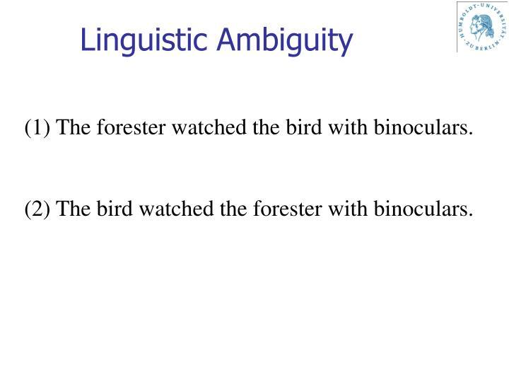 Linguistic Ambiguity