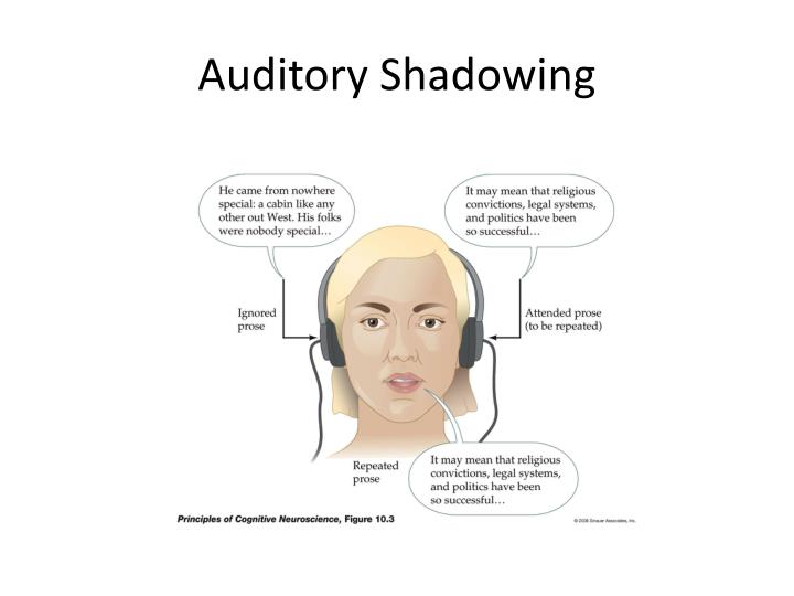 Auditory Shadowing