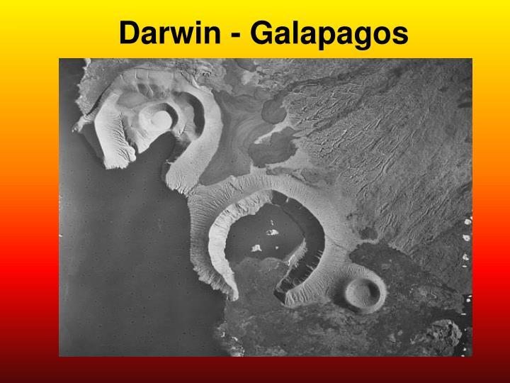 Darwin - Galapagos