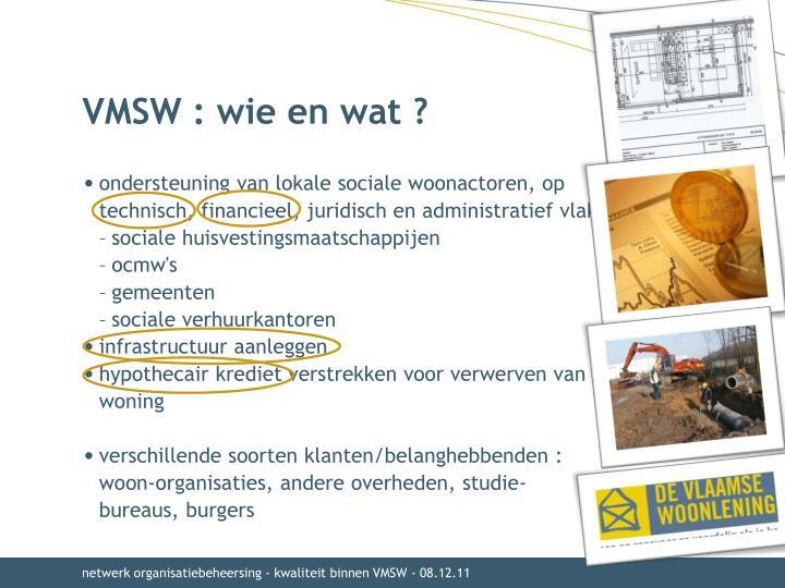 VMSW : wie en wat ?