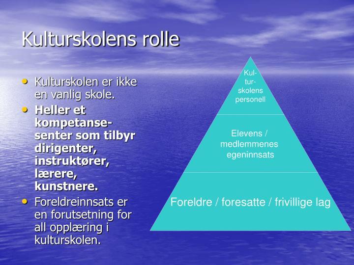 Kulturskolens rolle