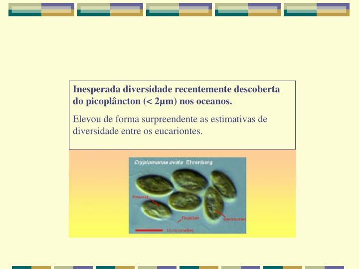 Inesperada diversidade recentemente descoberta do picoplâncton (< 2